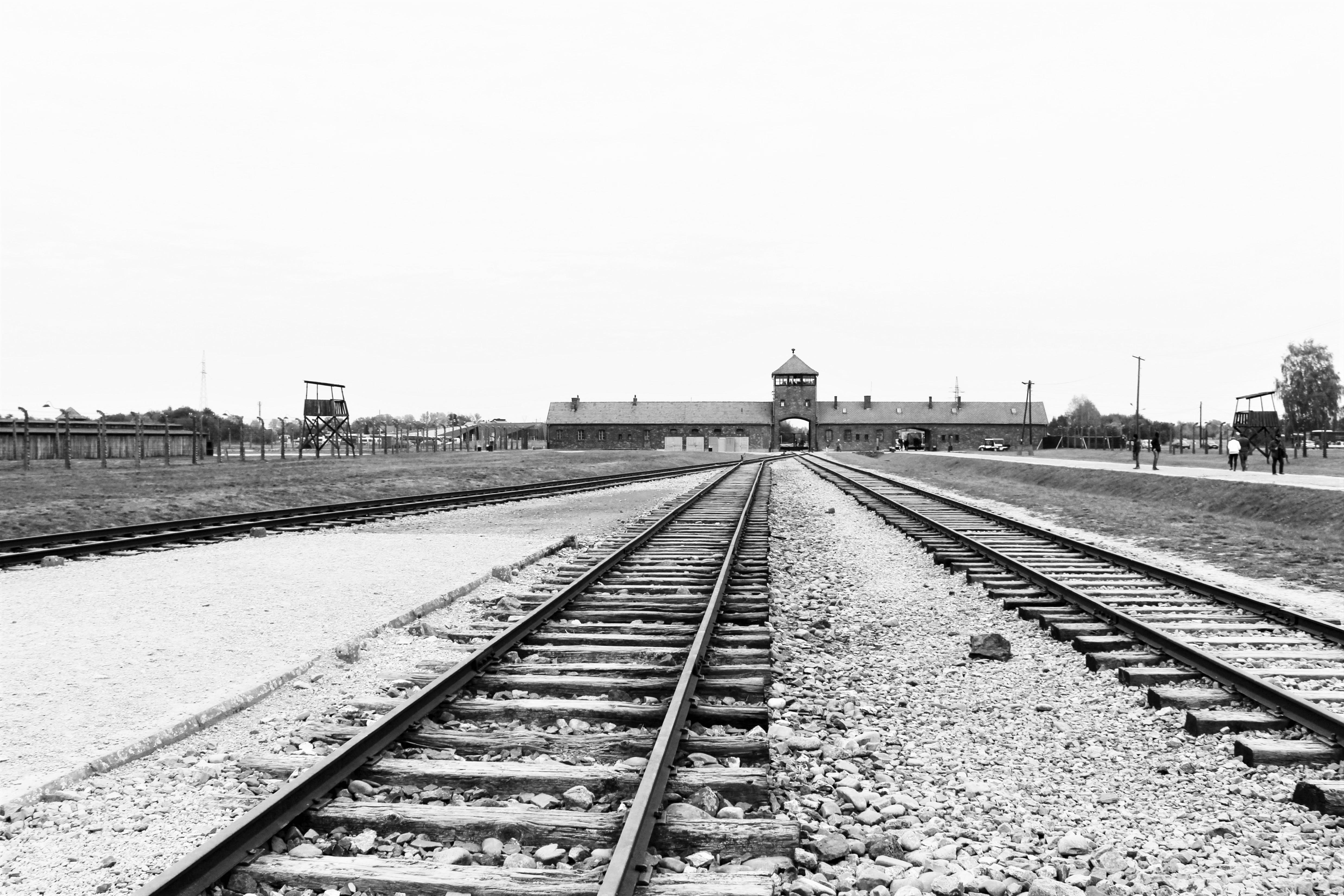 Auschwitz birkenau journ e eprouvante mais n cessaire - Les chambres a gaz ont elles vraiment existees ...
